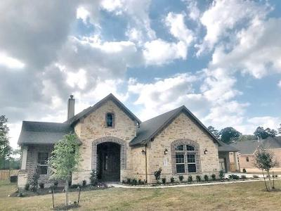 Conroe Single Family Home For Sale: 14010 S Evergreen Ridge Court
