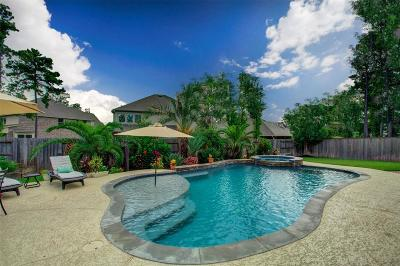 The Woodlands Single Family Home For Sale: 46 Whispering Thicket Place