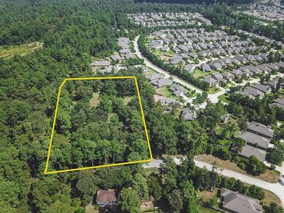 Tomball Single Family Home For Sale: 18620 King Road