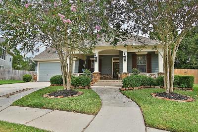 Single Family Home For Sale: 28418 Ryans Ridge Lane