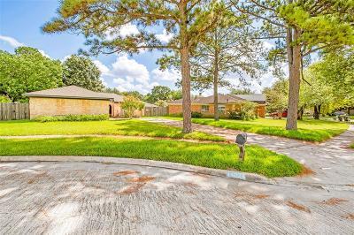 Sugar Land Single Family Home For Sale: 14034 Utopia Drive