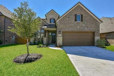 Spring Single Family Home For Sale: 3815 Ponderosa Peak Drive