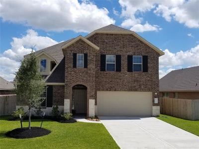 Katy Single Family Home For Sale: 4522 Terrazza Verde Drive