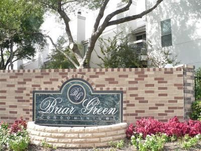 Houston Condo/Townhouse For Sale: 7900 N Stadium Drive #99