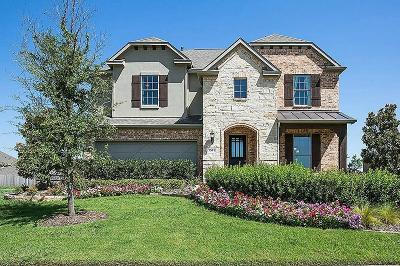 Pearland Single Family Home For Sale: 2804 Parkside Village Lane