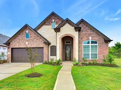 Sugar Land Single Family Home For Sale: 3834 Dogwood Canyon Lane