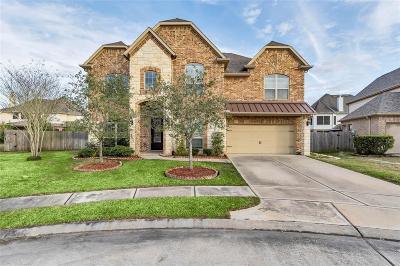 Houston Single Family Home For Sale: 9918 Wiltshire Way