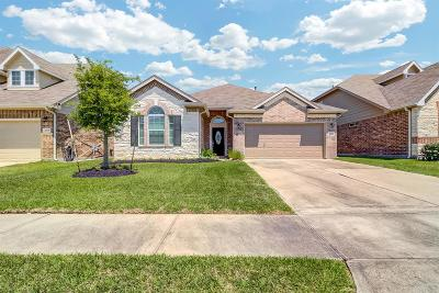 Katy Single Family Home For Sale: 21702 Alta Peak Way