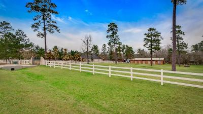 Montgomery Single Family Home For Sale: 11497 Majestic Drive