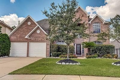 Katy Single Family Home For Sale: 23810 Allingham Lane