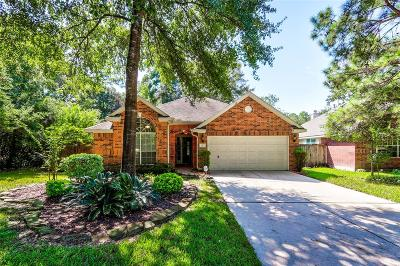 The Woodlands Single Family Home For Sale: 3 Auburn Path Drive