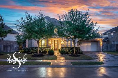 Katy Single Family Home For Sale: 10010 Nicolett Lake Lane