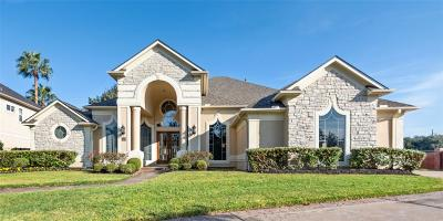 Sugar Land Single Family Home For Sale: 67 Schubach Drive
