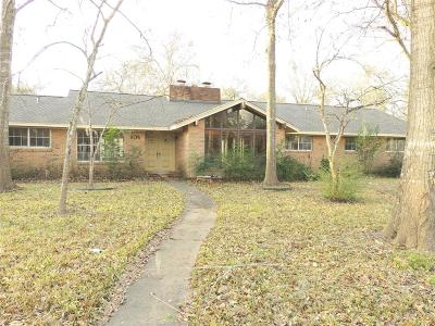Friendswood Single Family Home For Sale: 606 S Clear Creek Drive