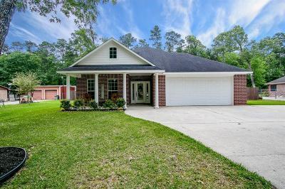 New Caney Single Family Home For Sale: 2615 Michaelangelo Street