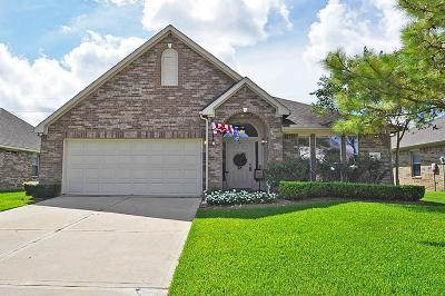 Fort Bend County Single Family Home For Sale: 9210 Sorrell Hollow Lane