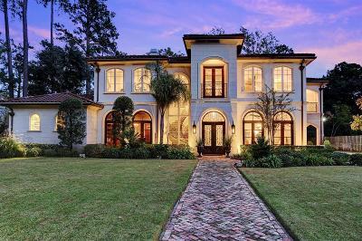 Houston Single Family Home For Sale: 310 Tynebridge Lane