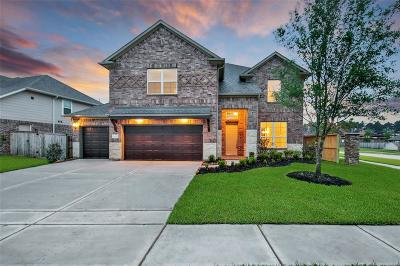 Tomball Single Family Home For Sale: 12015 Emery Oaks Lane