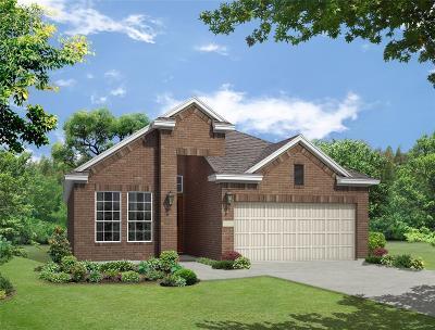 Montgomery Single Family Home For Sale: 120 Buckeye Drive