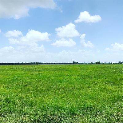 Fort Bend County Farm & Ranch For Sale: 14419 Highway 36