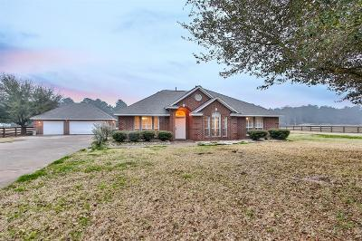 Cypress Single Family Home For Sale: 17010 Steinhagen Road