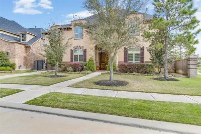 Fort Bend County Single Family Home For Sale: 26702 Cedardale Pines Drive