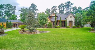 Conroe Single Family Home For Sale: 13220 Misty Sage Drive