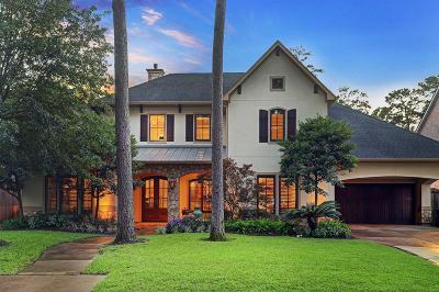 Houston Single Family Home For Sale: 111 Matisse Drive