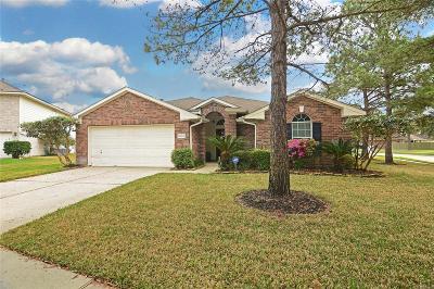 Single Family Home For Sale: 10002 Dakota Ridge Court
