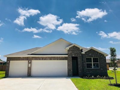 Houston Single Family Home For Sale: 17702 Holt Fleet Drive