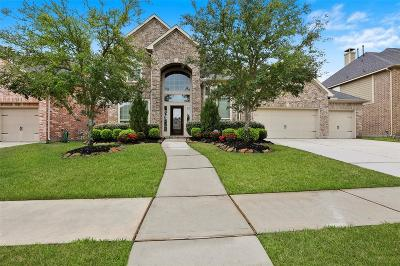Houston Single Family Home For Sale: 13510 Navigate Point Lane