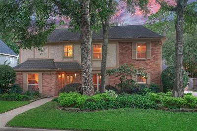 Houston Single Family Home For Sale: 13719 Darrington Lane