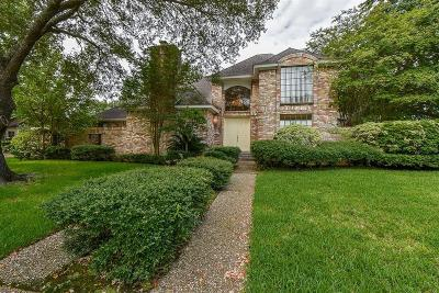 Houston Single Family Home For Sale: 17427 Sandy Cliffs