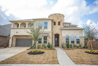 Katy Single Family Home For Sale: 2702 Dogwood Terrace Lane