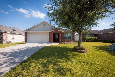 Texas City Single Family Home For Sale: 9023 Amberjack Drive