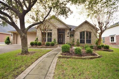 Houston Single Family Home For Sale: 4146 Pine Crest Trail