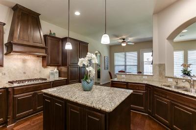 Spring Single Family Home For Sale: 20211 Altai Terrace Drive