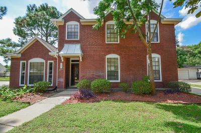 Houston Single Family Home For Sale: 7603 Rock Falls Court