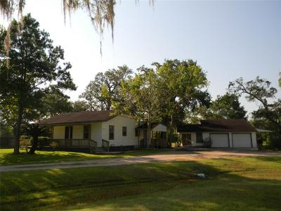 Brazoria Single Family Home For Sale: 5685 Ratjen Road