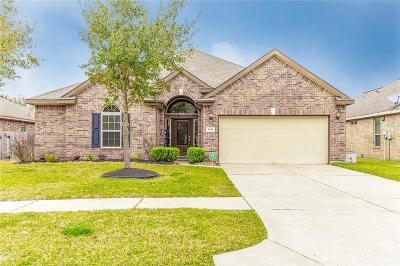 Rosenberg Single Family Home For Sale: 6110 Carnaby Lane