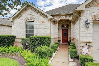League City Single Family Home For Sale: 715 Cortona Court