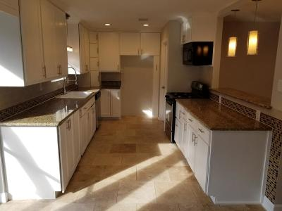 Houston Single Family Home For Sale: 15907 Alta Mesa Drive