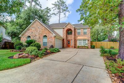 Montgomery Single Family Home For Sale: 12631 Brontton Court