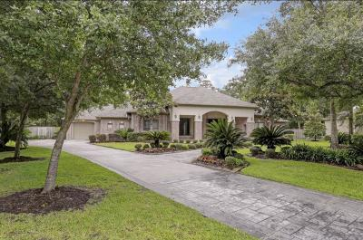 Single Family Home For Sale: 13406 Pinnacle Place