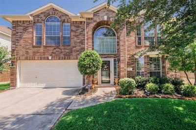 Montgomery County Single Family Home For Sale: 519 Anacacho Drive