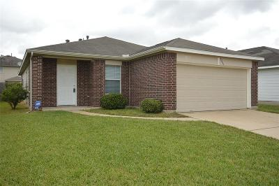 Katy Single Family Home For Sale: 21530 N Boundary Peak Way