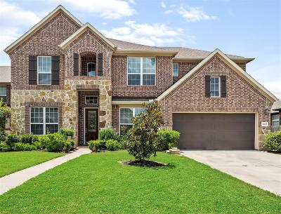 Fort Bend County Single Family Home For Sale: 4618 Rockton Hills Ln