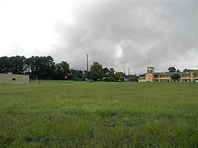 Tomball Residential Lots & Land For Sale: Fm 2920 Road
