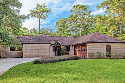 Houston Single Family Home For Sale: 10014 Green Tree Road