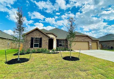 Tomball Single Family Home For Sale: 30918 Roanoak Woods Drive